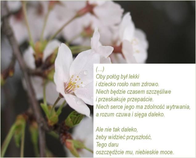 """Wiesława Szymborska """"Rozpoczęta opowieść"""""""